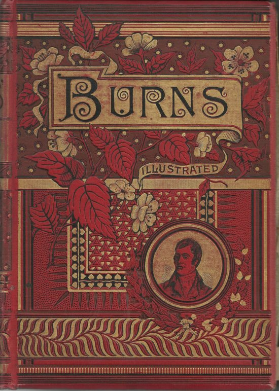 Illustrated Family Burns 1870