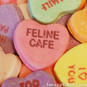 Feline cafe sweeties