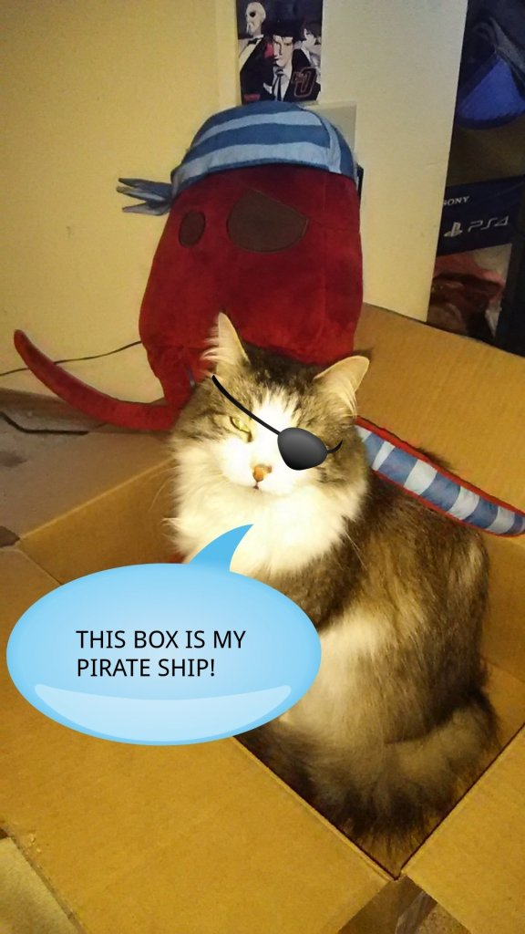 This box is my pirate ship!