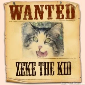 Zeke wanted