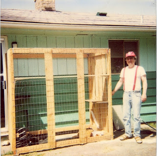 me cats and catio