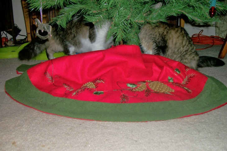 Zeke and Opie under tree