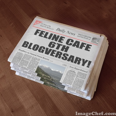 blogversary newspaper headline