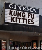 kung fu kitties marquis