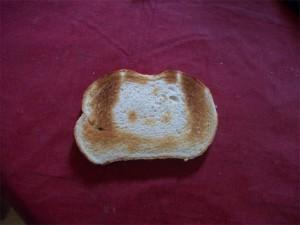 cat toast