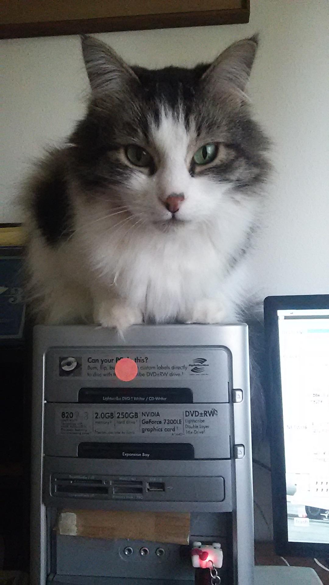 Zeke computer