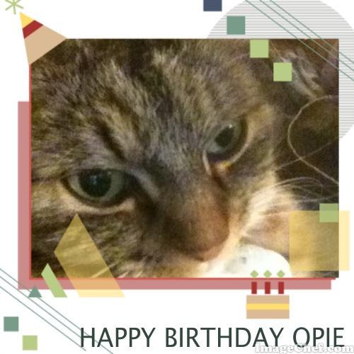 Opie birthday card