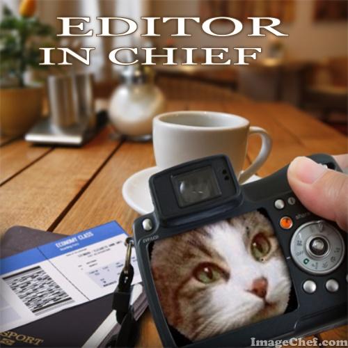 zeke editor in chief