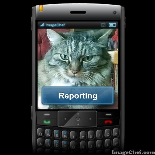 opie reporting