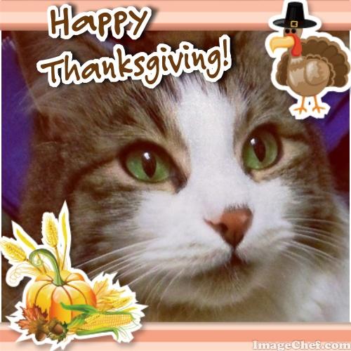 Zeke happy thanksgiving