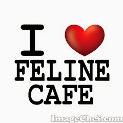 I love feline cafe