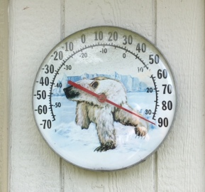 Polar Bear Thermometer