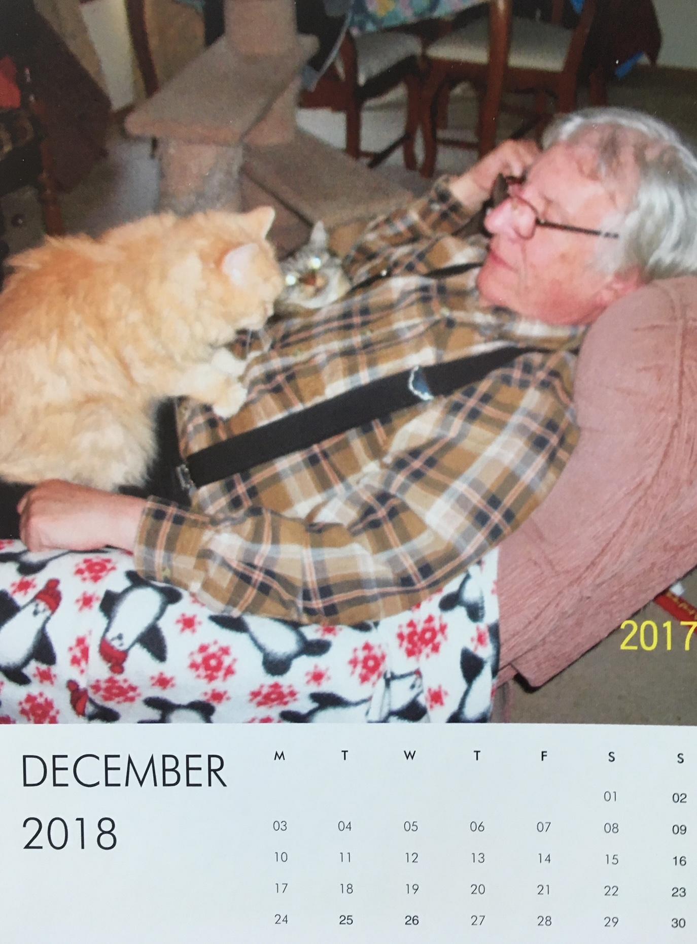 Marigold cat calendar