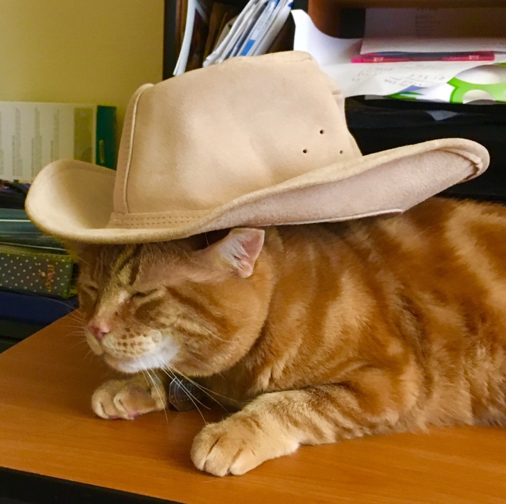 Scooby cowboy hat