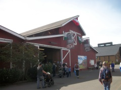 small animal barn