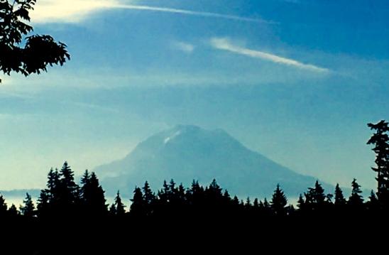 Mt Rainier WA