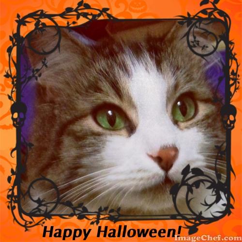 Zeke Happy Halloween frame