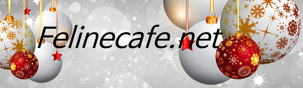 Feline cafe xmas header with text