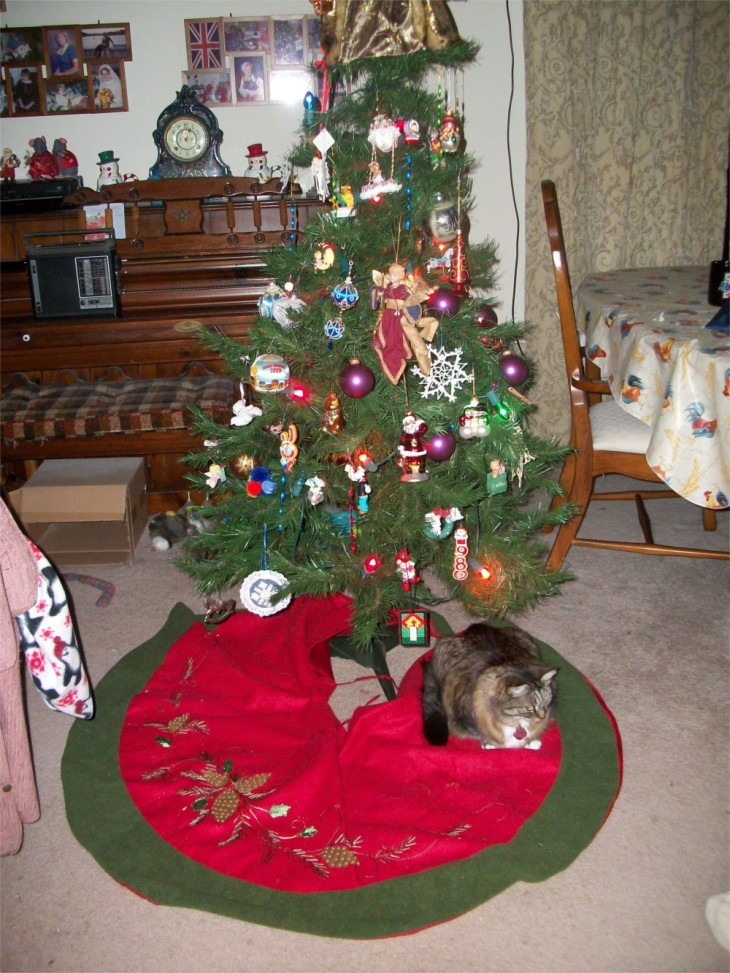Opie cat Christmas tree