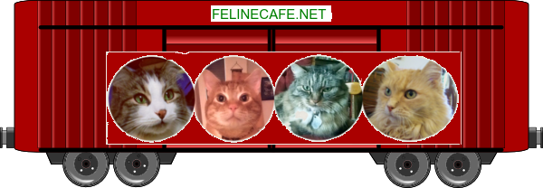 felinecafe blessing train boxcar