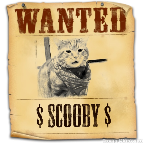 Scooby wanted poster