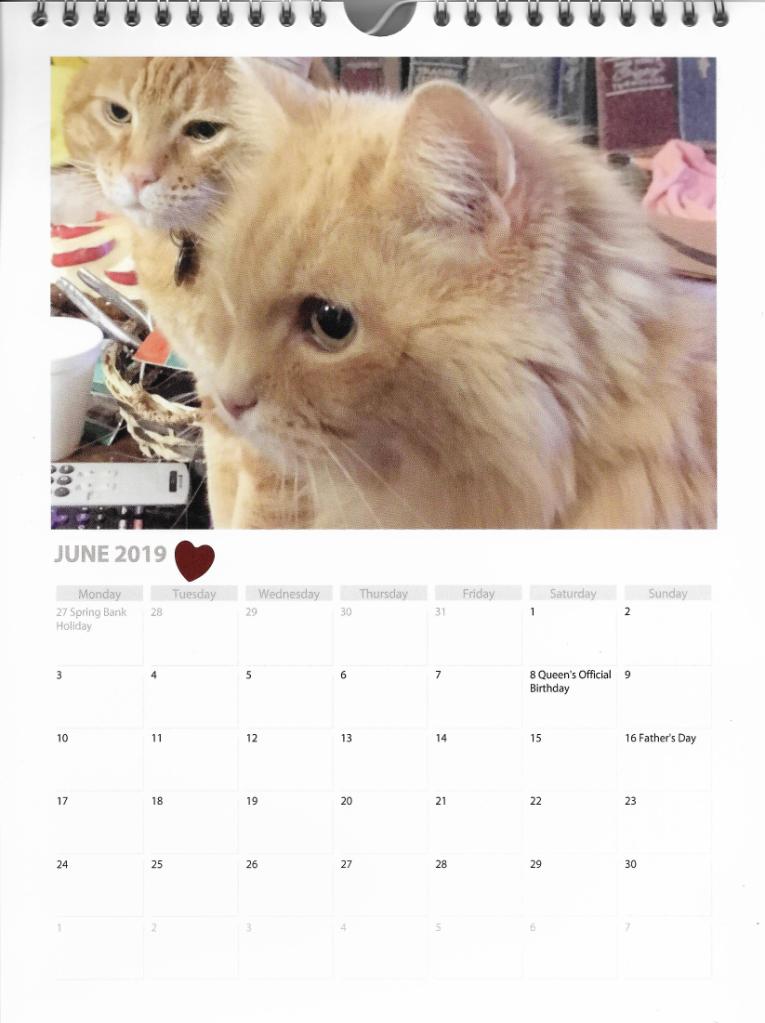 Scooby Marigold calendar