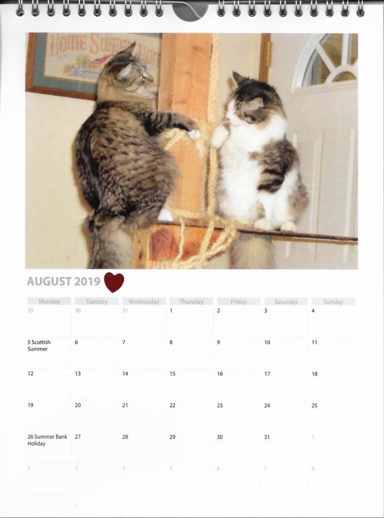Opie Zeke Calendar Cats August