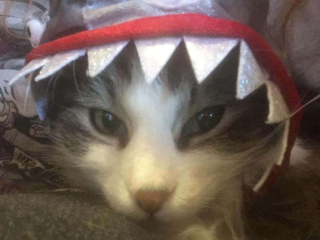 Jaws Zeke