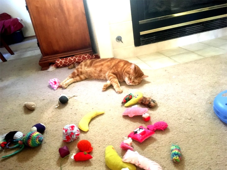 Scooby sleeping toys