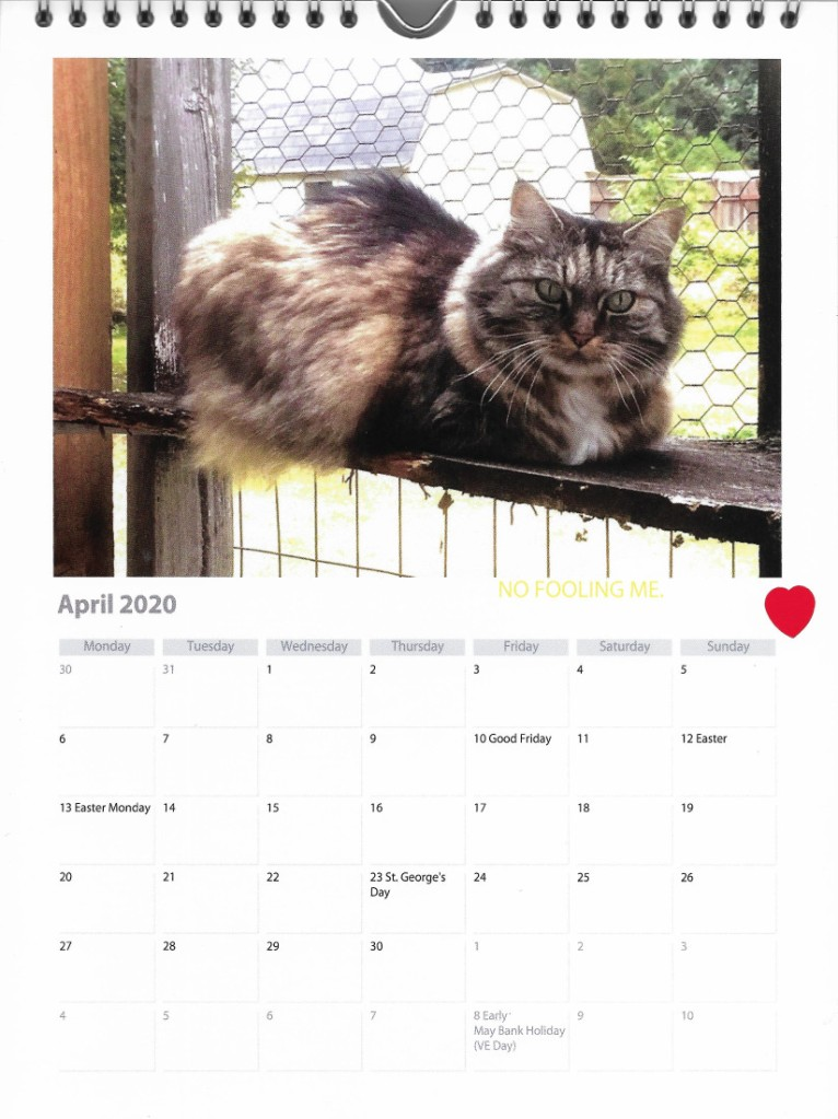 Opie in catio April calendar