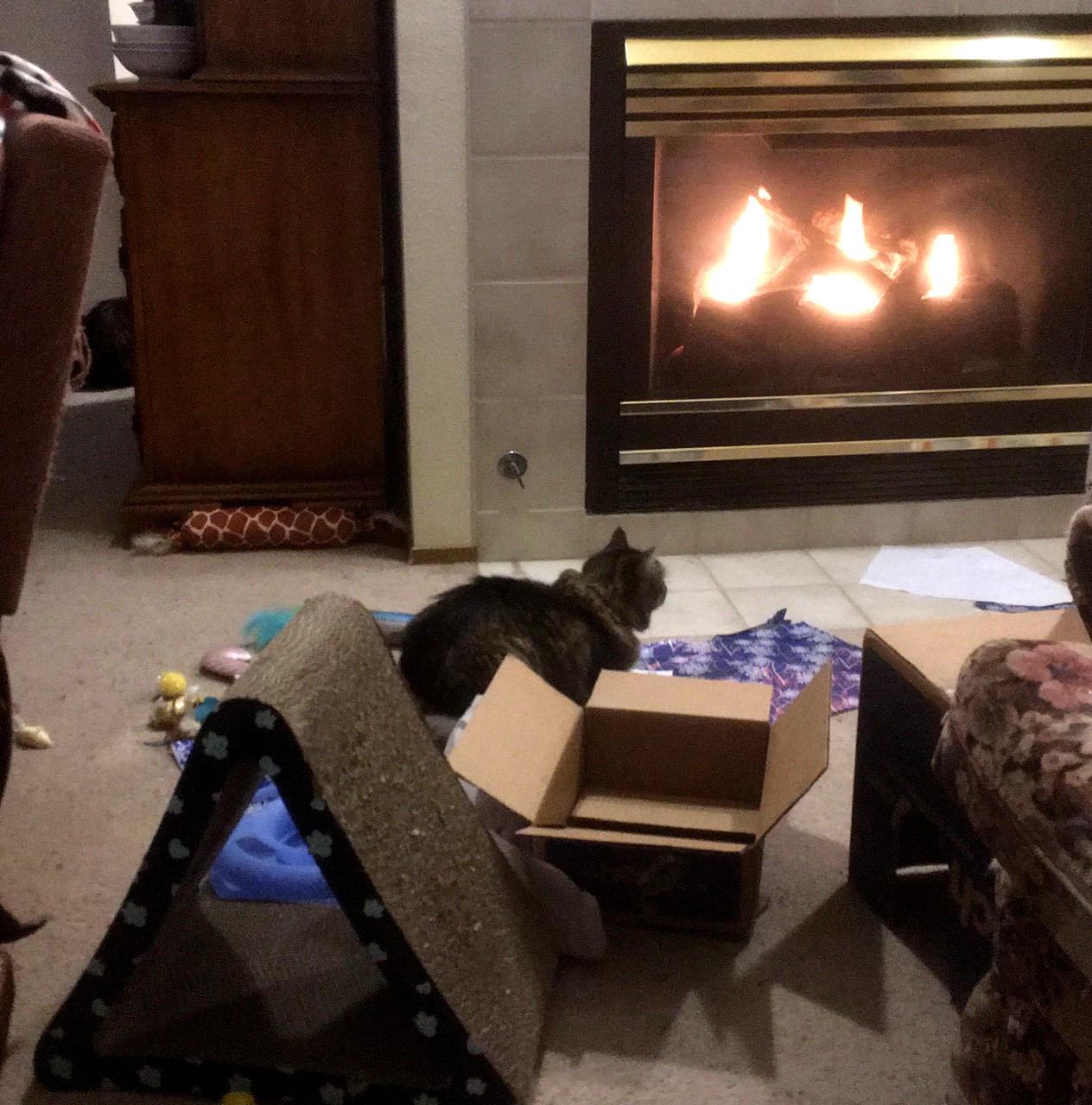 Opie fireplace