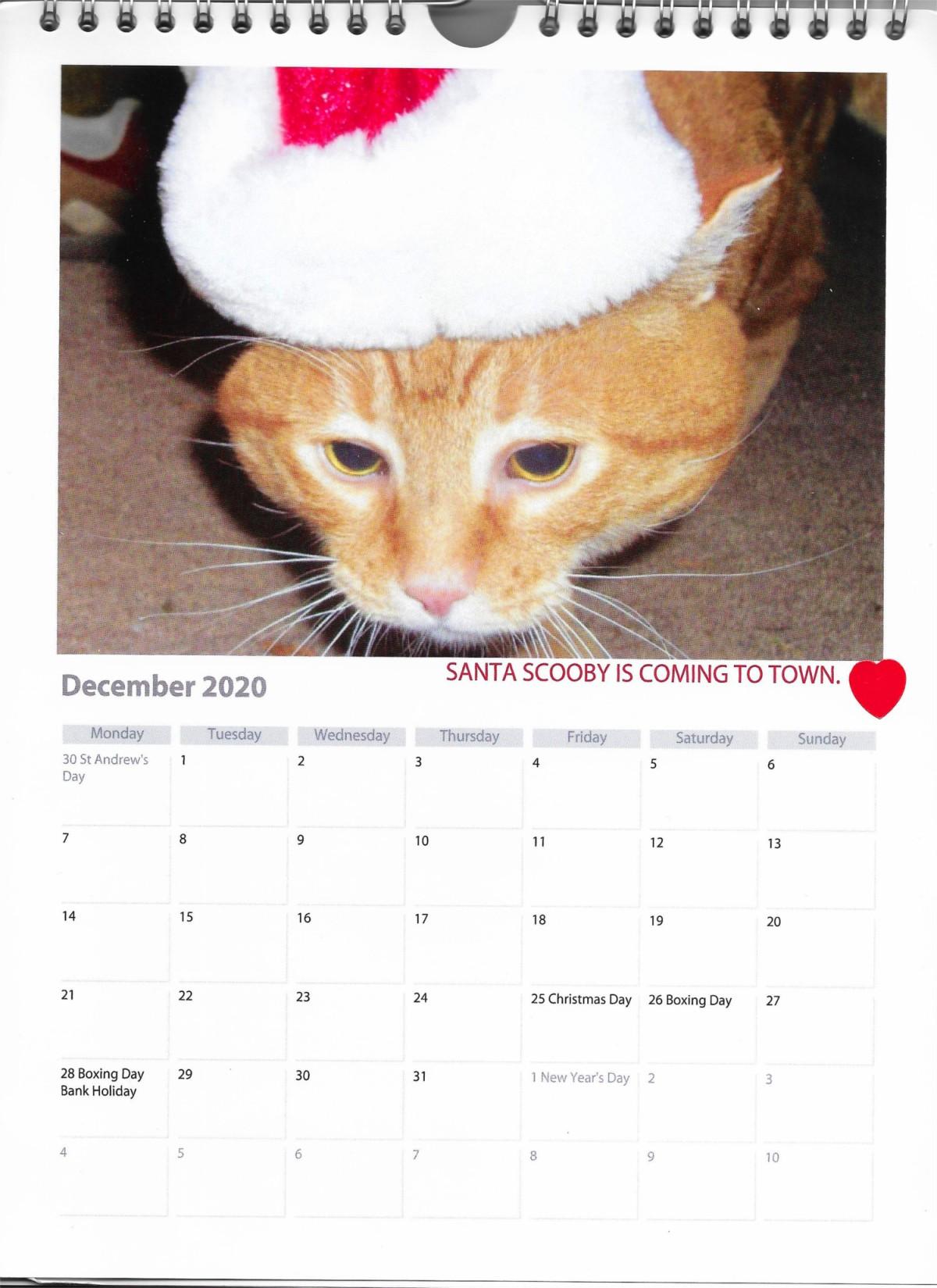 December calendar Santa Scooby