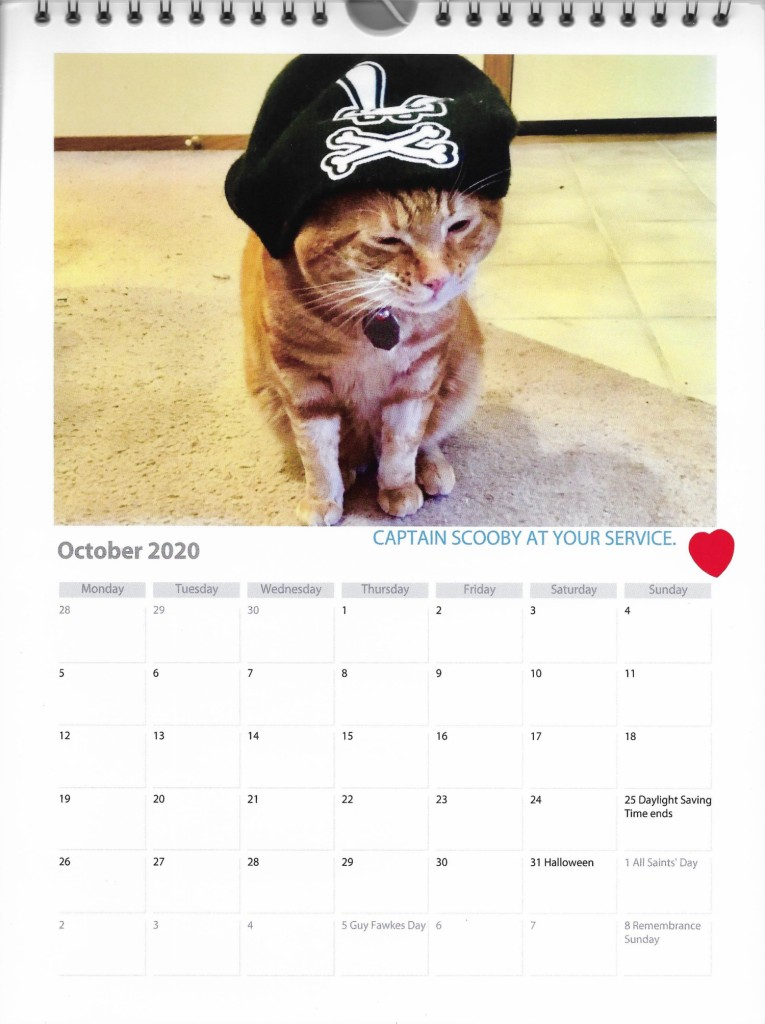 October calendar Scooby pirate