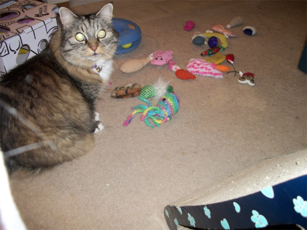 Opie and toys