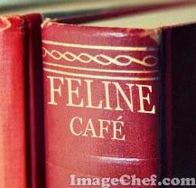 feline cafe book