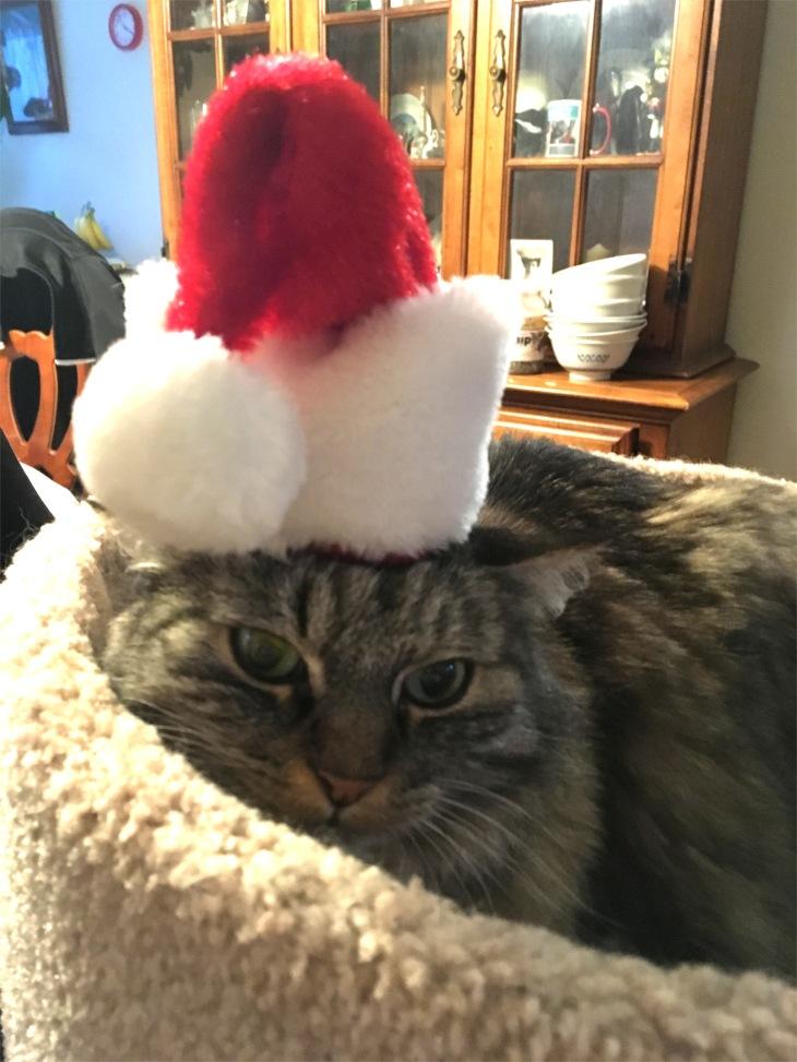 Opie Santa hat