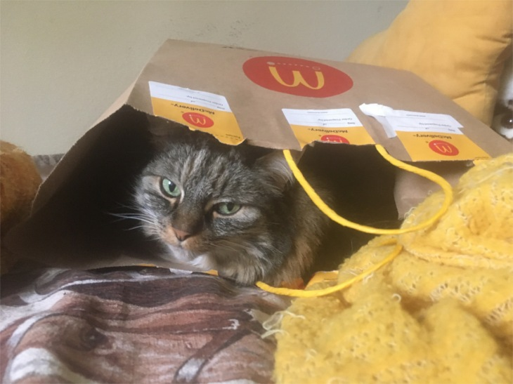 Opie in McDonalds delivery baag